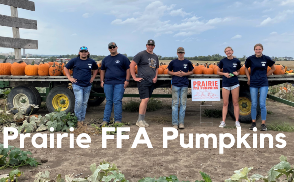 Prairie FFA Pumpkins